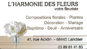 harmonie des fleurs